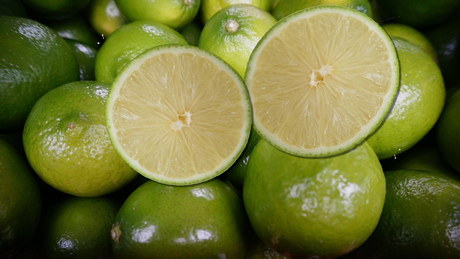 南投A級無籽檸檬 | 特級無子檸檬 | 特級無籽檸檬(30斤裝