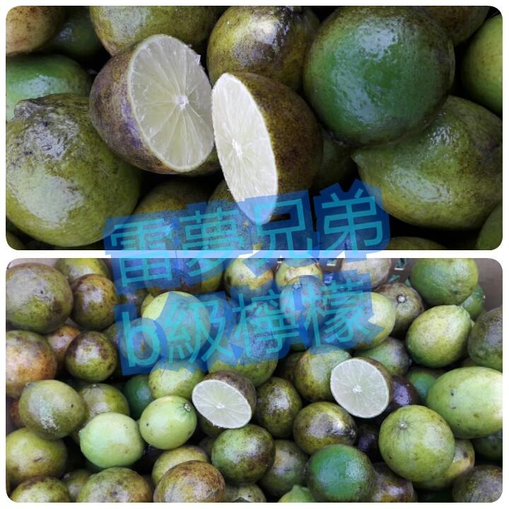 南投b級無籽檸檬 | b級無子檸檬 | b級無籽檸檬(20斤裝)&